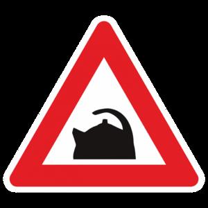 Знак «За рулём чайник»_0107